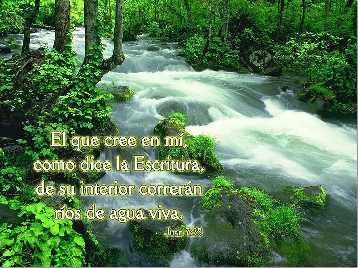 El que cree en Jesús, de su interior correran rios de agua viva